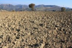 fase lav. terreno